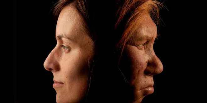 Notre ADN du Néandertal associé aux risques d'allergies et de dépressions