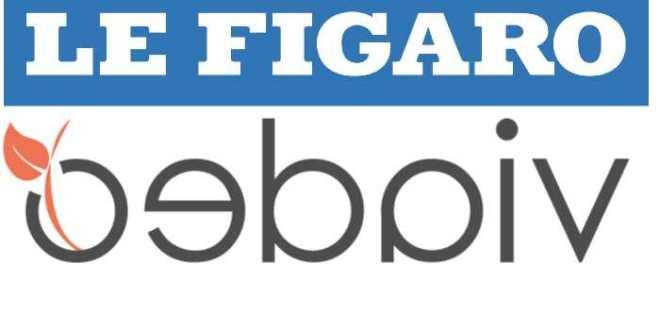 Le Figaro gobe Viadeo