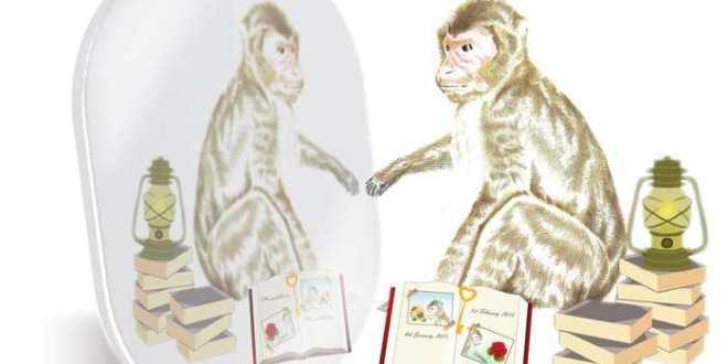 Comme les humains, les macaques peuvent évaluer le rappel de leur mémoire