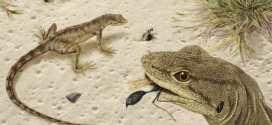 Le Magnuviator, une nouvelle espèce de lézard pendant l'ère des dinosaures