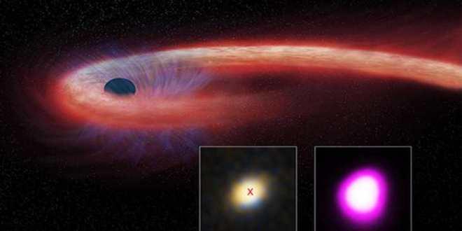 Record de longévité pour le festin d'un trou noir