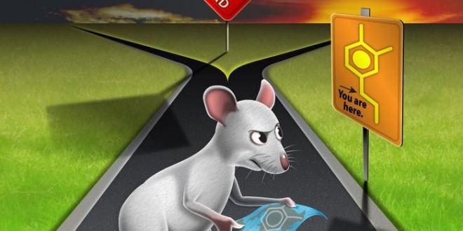 La dopamine vous aide dans les décisions difficiles