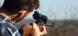 Baisse de 83 % des mammifères et 58 % des oiseaux à cause de la chasse