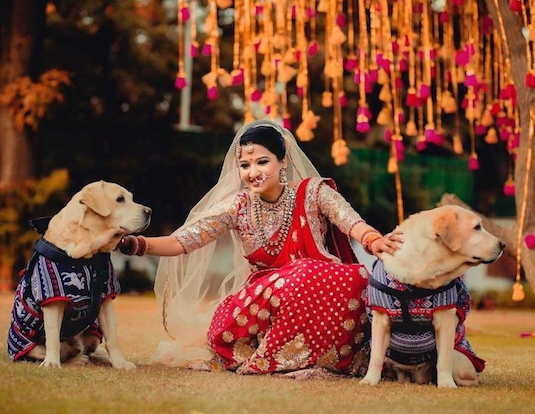 Cute Ideas To Include Your Pooch In Your Wedding   Indian Fashion Blog