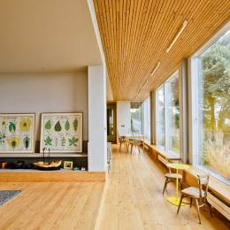 Internal Timber Cladding Guide Homebuilding Renovating