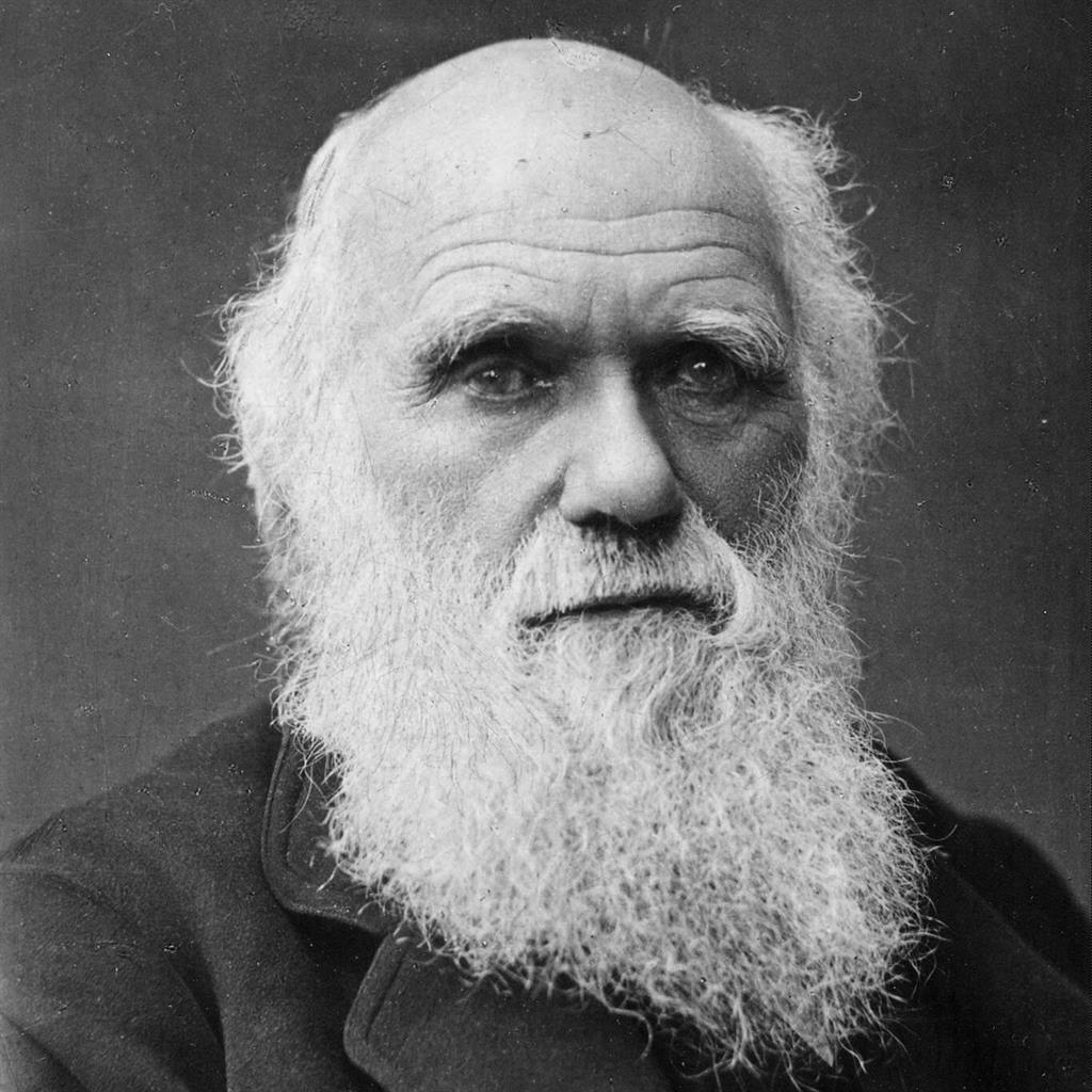 Precious: Charles Darwin and (below) the script PICTURES: EPA/SWNS