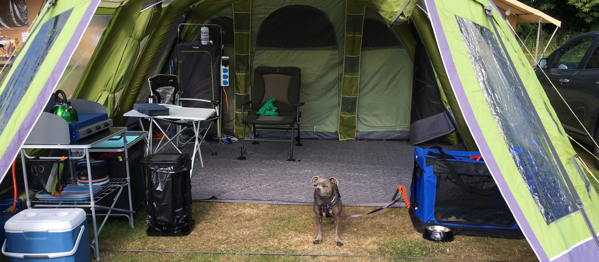Travelling with our dog, Pepper, in Europe