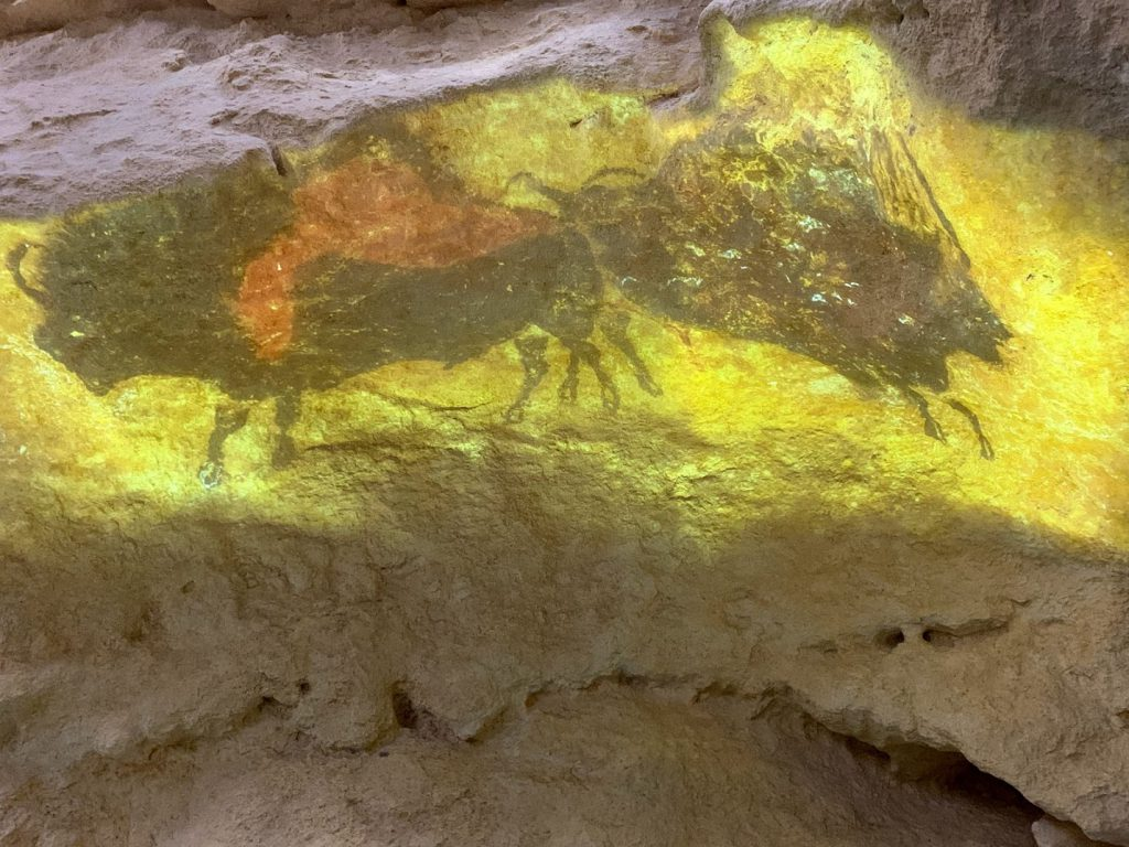 Lascaux Paintings two bulls