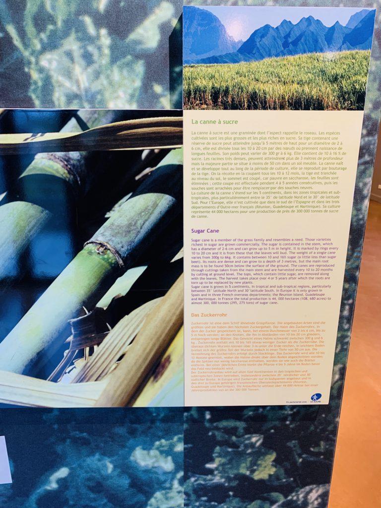 Description of Sugar cane at the Haribo Museum