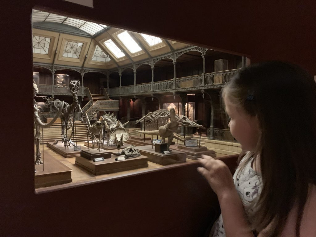 Olivia looking at miniture natural history museum in museum in Lyon