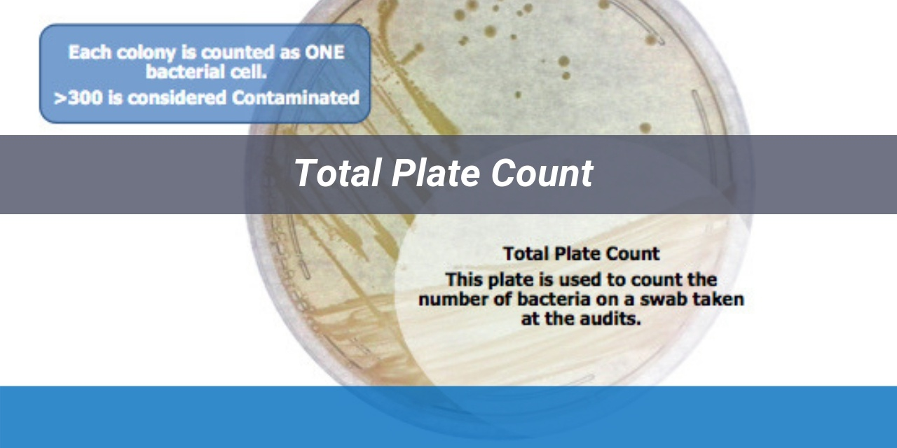 total plate count