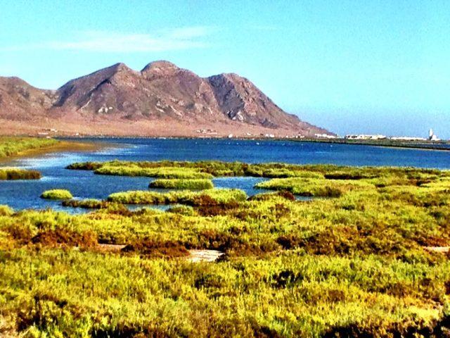 Cabo de Gata - Salinas