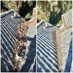 best roof cleaning near me june 2021