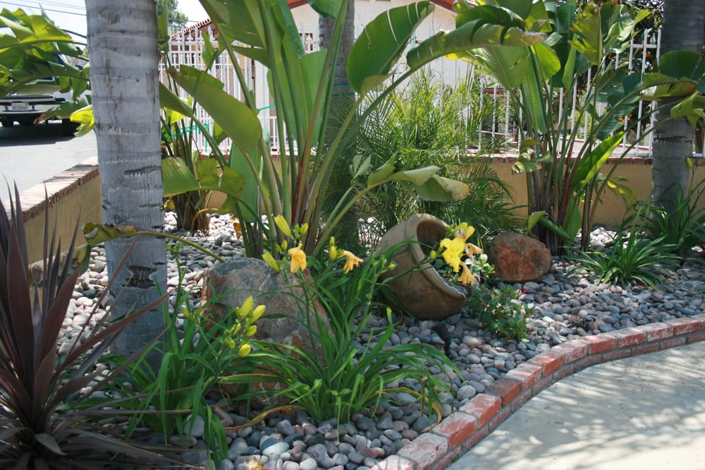 Giant Bird of paradise, daylilies and accent pot with ... on Birds Backyard Landscapes  id=53850