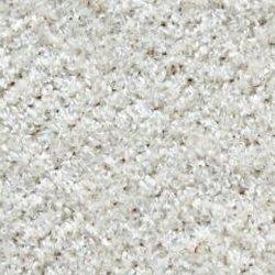 Ultimate Carpet Care Lets See Carpet New Design