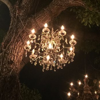 Photo Of Chandelier Tree Los Angeles Ca United States My Favorite One