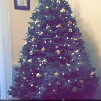 mr jingle s christmas trees 65 photos 100 reviews