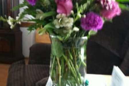 Best wild flowers flower delivery colorado springs co wild flowers wild flowers flower delivery colorado springs co mightylinksfo