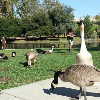 Mary Vagle Museum & Nature Center - 171 Photos & 24 ...