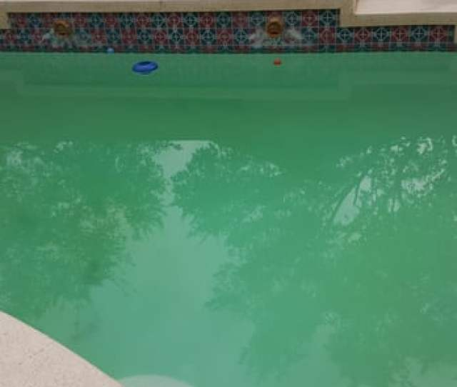 Photo Of Pool Agency Phoenix Az United States This Is What Your