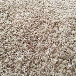Tims Carpet Cleaning At Affordable Prices   Carpet Cleaning   3802     Photo of Tims Carpet Cleaning At Affordable Prices   Fredericksburg  VA   United States