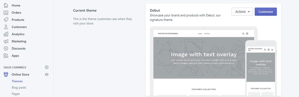 Choose Theme in Shopify