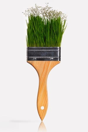 What is an Eco-Friendly Paint
