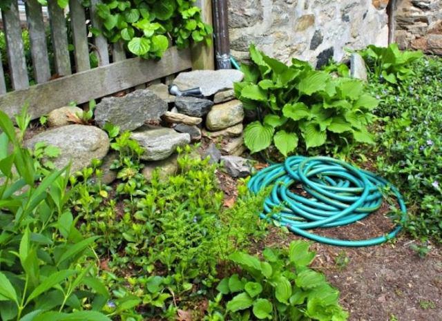 Hose hiding planter before tml