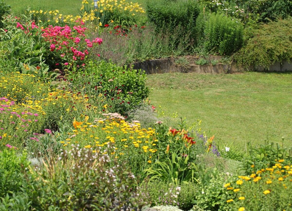 Backyard Slope Landscaping Ideas - 10 Things To Do - Bob Vila on Backyard With Slope Ideas  id=86966