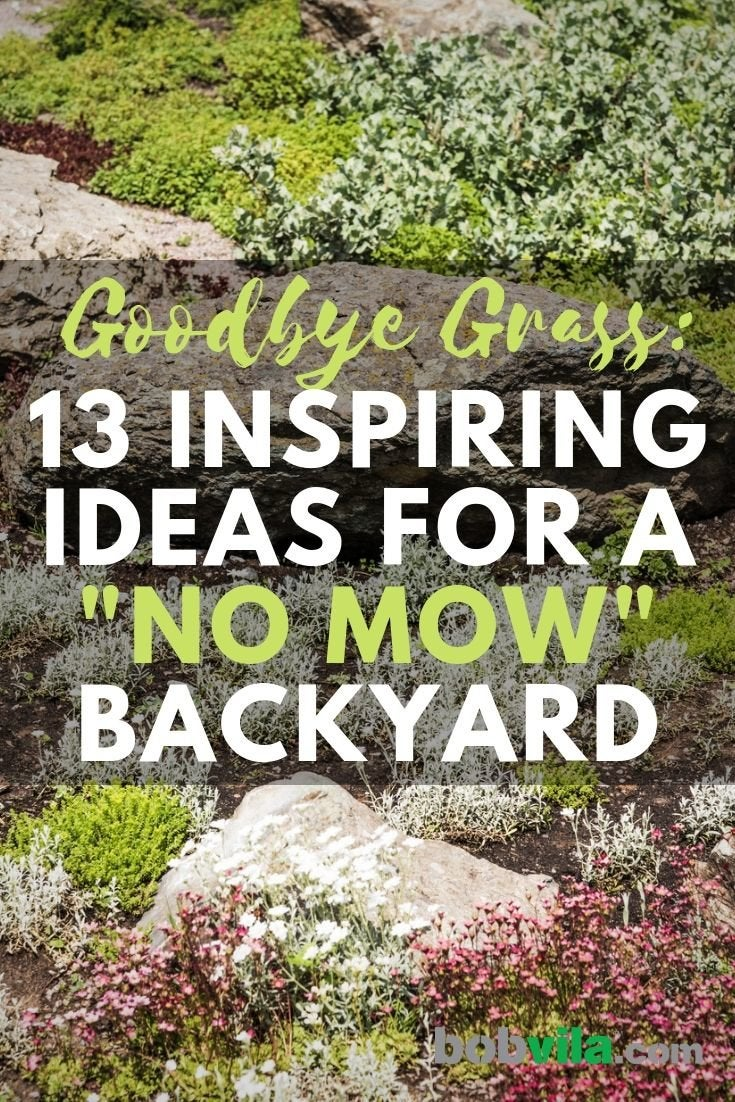 "Easy Landscaping Ideas - 13 Ideas for a ""Now Mow"" Yard ... on No Mow Backyard Ideas id=25419"
