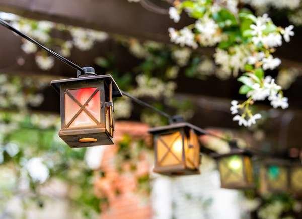 35 Pergola-Designs, die Ihrem Garten Stil verleihen