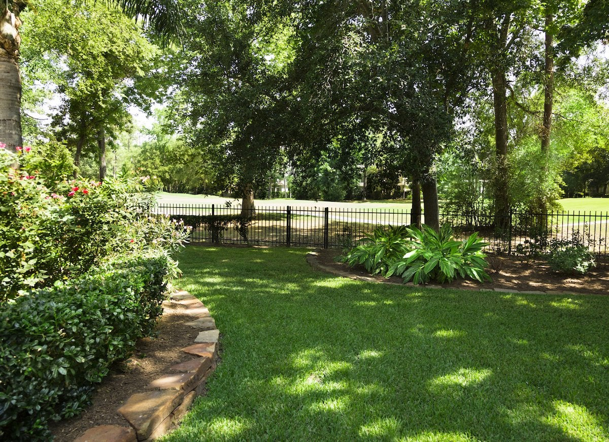 Shade Plants - 20 Plants That Don't Need Sun - Bob Vila on Shady Yard Ideas id=96721
