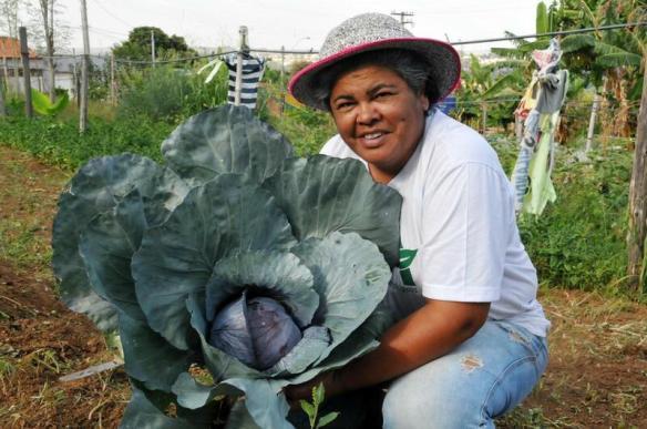 Hortas comunitárias auxiliam no consumo de alimentos saudáveis