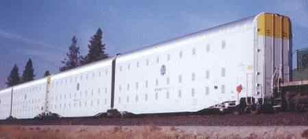 FEMA_train