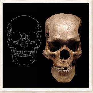 strange-skull-giant