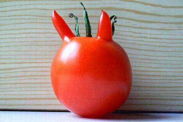 vegetables_that_are_desperately_trying_to_be_something_else_640_13