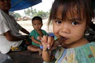 Rat meat eating (Reuters)