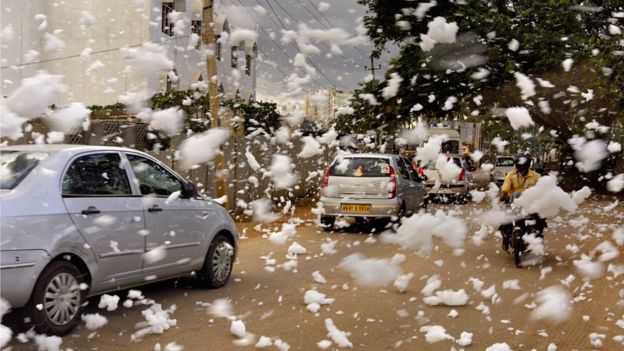 Bellandur-toxic-foam3