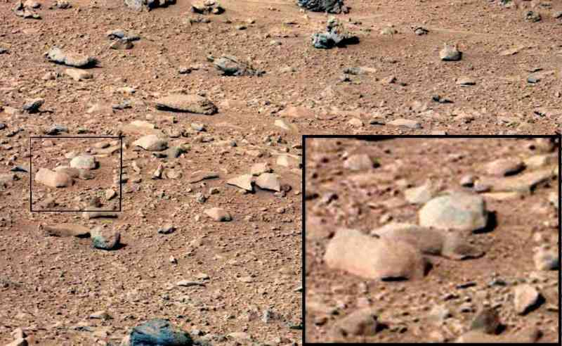 mars-rodent-orig-rover-composite1