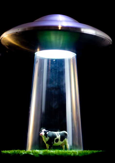 Luminárias ufológicas e outras criações