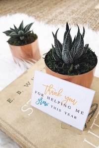 """Any educator will love being presented with this sweet """"Thanks For Helping Me Grow"""" Teacher Gift. Find succulents at any local garden center, and print out this gift tag for something quick and easy! >>> atkinsondrive.com"""