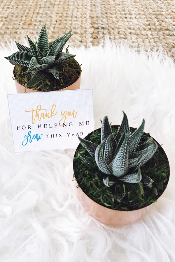 Any educator will love being presented with this sweet Thanks For Helping Me Grow Teacher Gift. Find succulents at any local garden center, and print out this gift tag for something quick and easy! >>> atkinsondrive.com