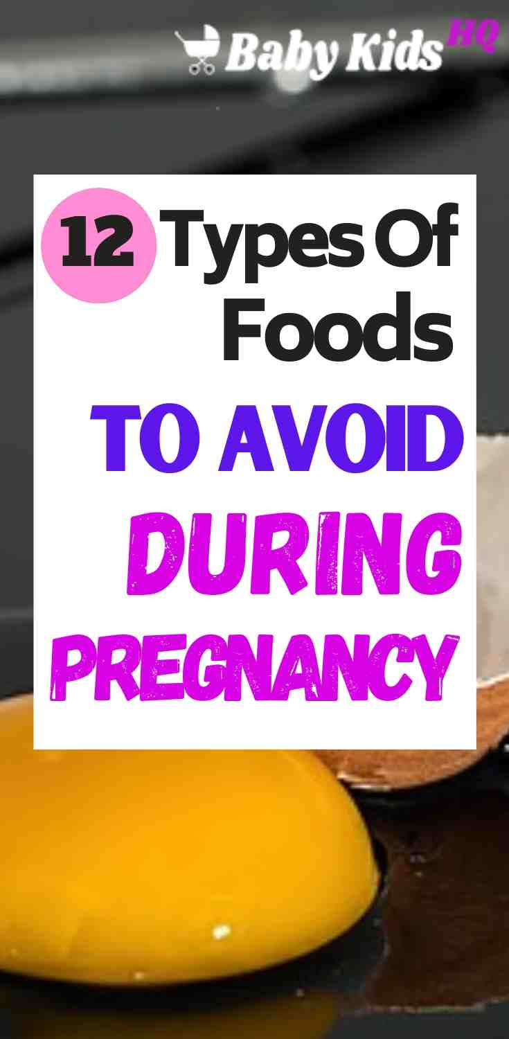 12 Types Of Foods Or Meals To Avoid During Pregnancy 1