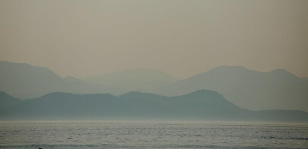 Millet blue horizon