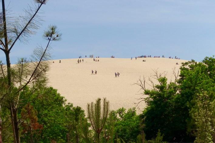 Dune du Pilat hilltop