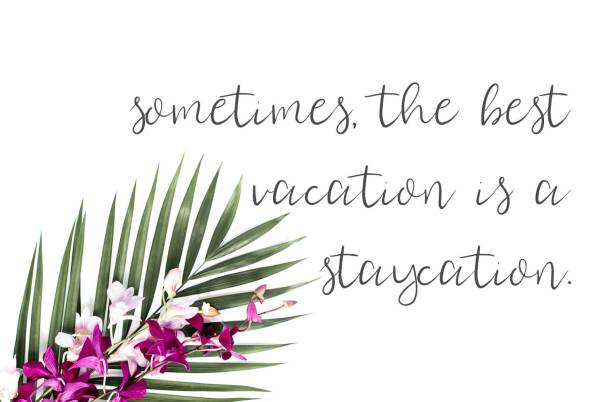 Staycation Script Font | Beck McCormick