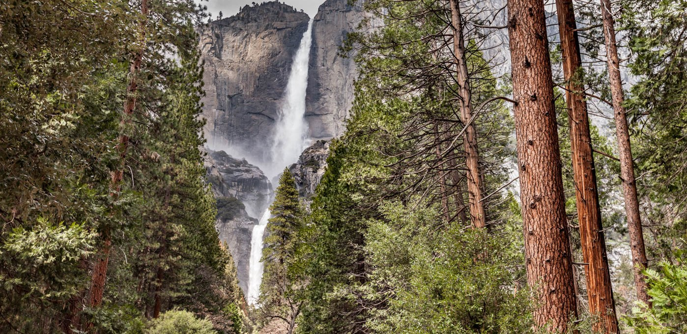 Lower Yosemite Fall – Why It's My Favorite Hike at Yosemite National Park