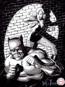 wildcat and black canary