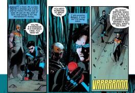 Nightwing 2 raptor