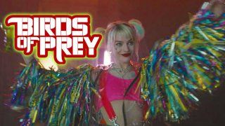 Birds of Prey - Budget